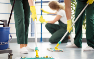 Profitable Well-Known Cleaning Services Firm