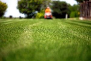 Profitable, Long-Established Lawn & Snow Service