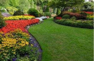 Profitable Lawn & Landscaping Business 250+ Client List FOR SALE